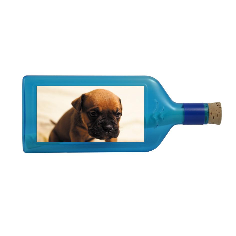 Hunde-Sujet Flaschengruss