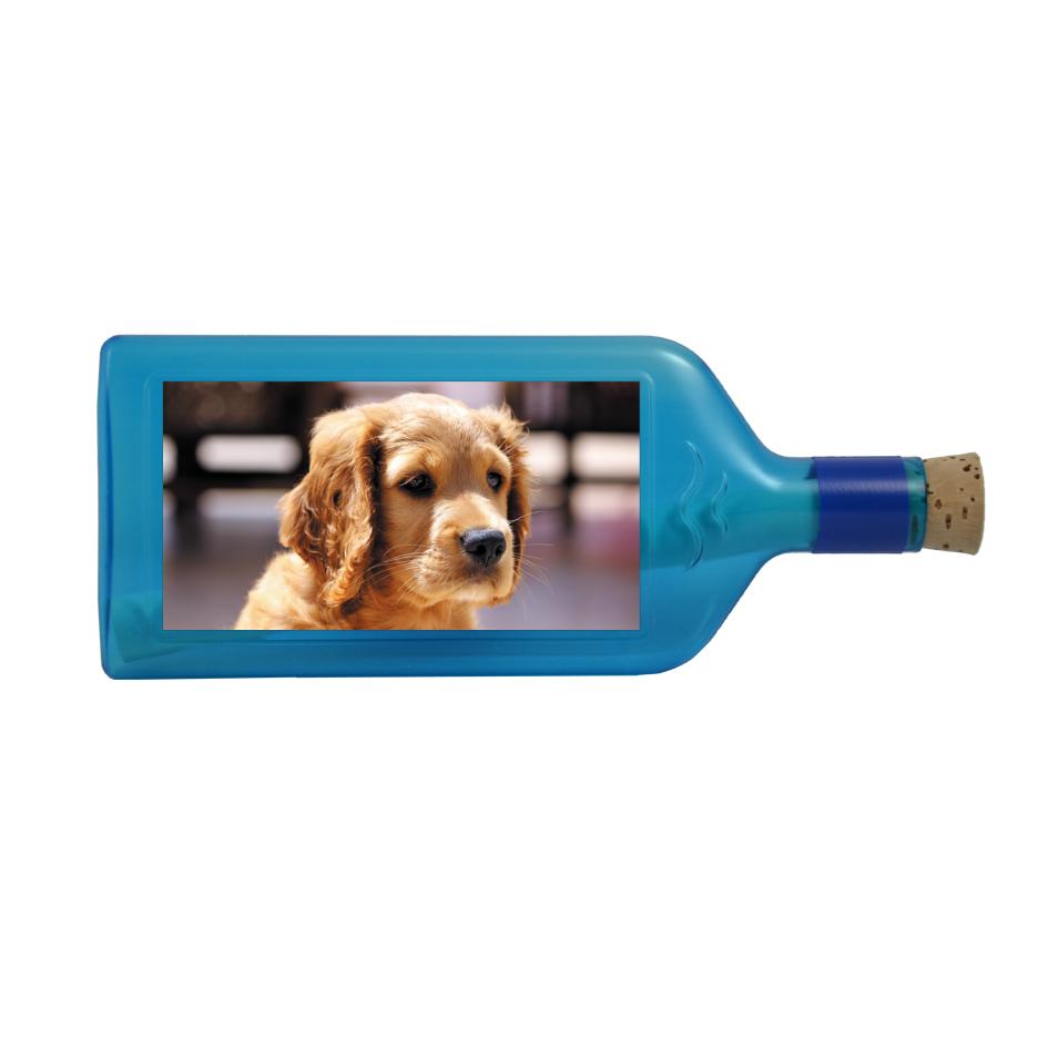 Flaschenpost Hund